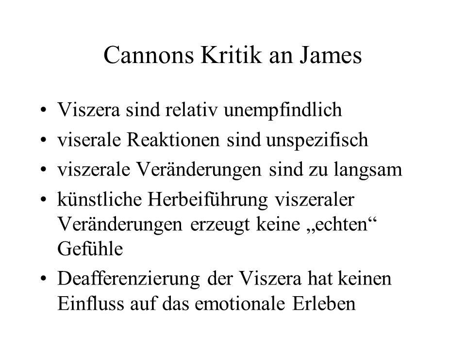 Cannons Kritik an James Viszera sind relativ unempfindlich viserale Reaktionen sind unspezifisch viszerale Veränderungen sind zu langsam künstliche Herbeiführung viszeraler Veränderungen erzeugt keine echten Gefühle Deafferenzierung der Viszera hat keinen Einfluss auf das emotionale Erleben