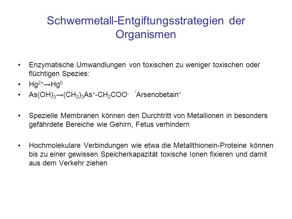 Schwermetall-Entgiftungsstrategien der Organismen Enzymatische Umwandlungen von toxischen zu weniger toxischen oder flüchtigen Spezies: Hg 2+ Hg 0 As(