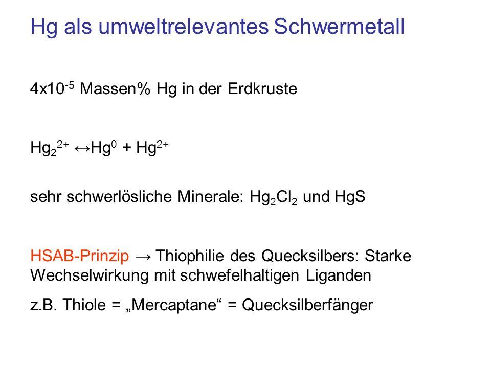 Hg als umweltrelevantes Schwermetall 4x10 -5 Massen% Hg in der Erdkruste Hg 2 2+ Hg 0 + Hg 2+ sehr schwerlösliche Minerale: Hg 2 Cl 2 und HgS HSAB-Pri