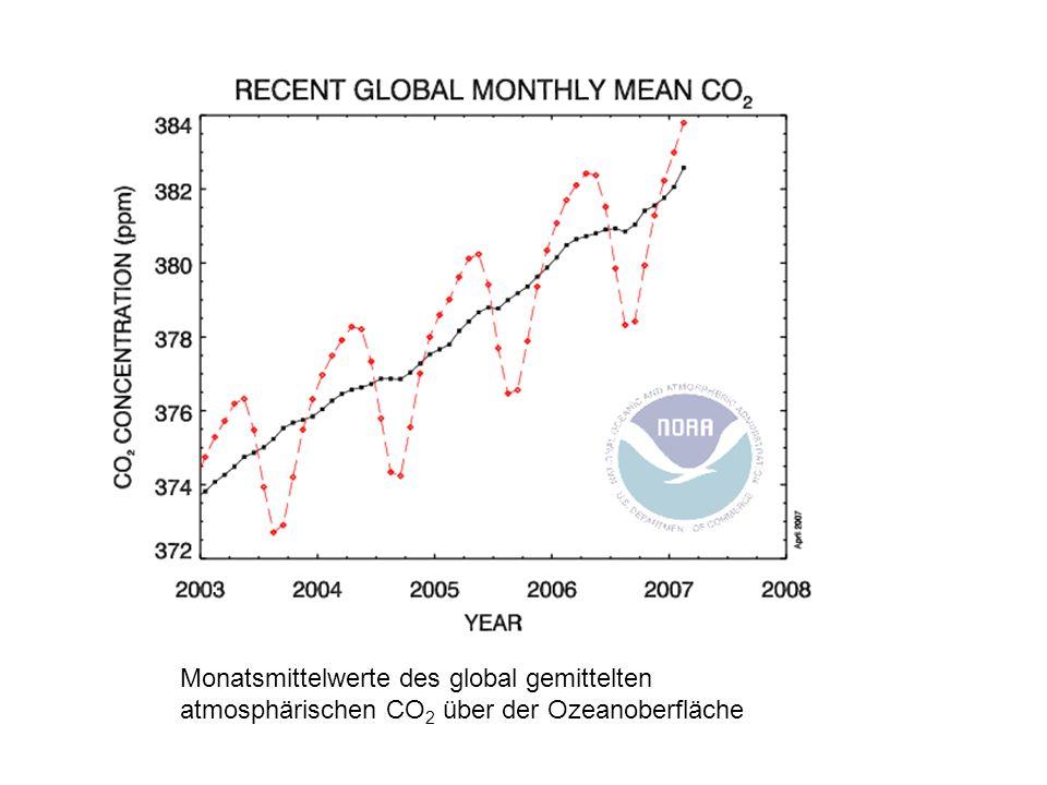 The graph shows recent Monatsmittelwerte des global gemittelten atmosphärischen CO 2 über der Ozeanoberfläche