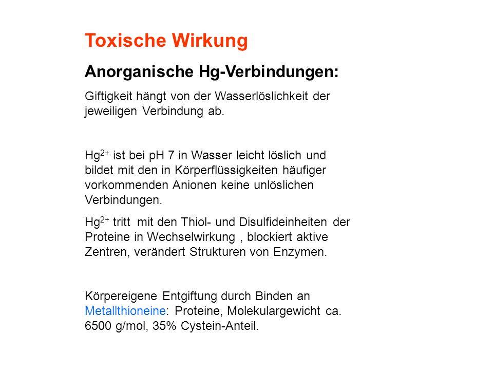 Toxische Wirkung Anorganische Hg-Verbindungen: Giftigkeit hängt von der Wasserlöslichkeit der jeweiligen Verbindung ab. Hg 2+ ist bei pH 7 in Wasser l