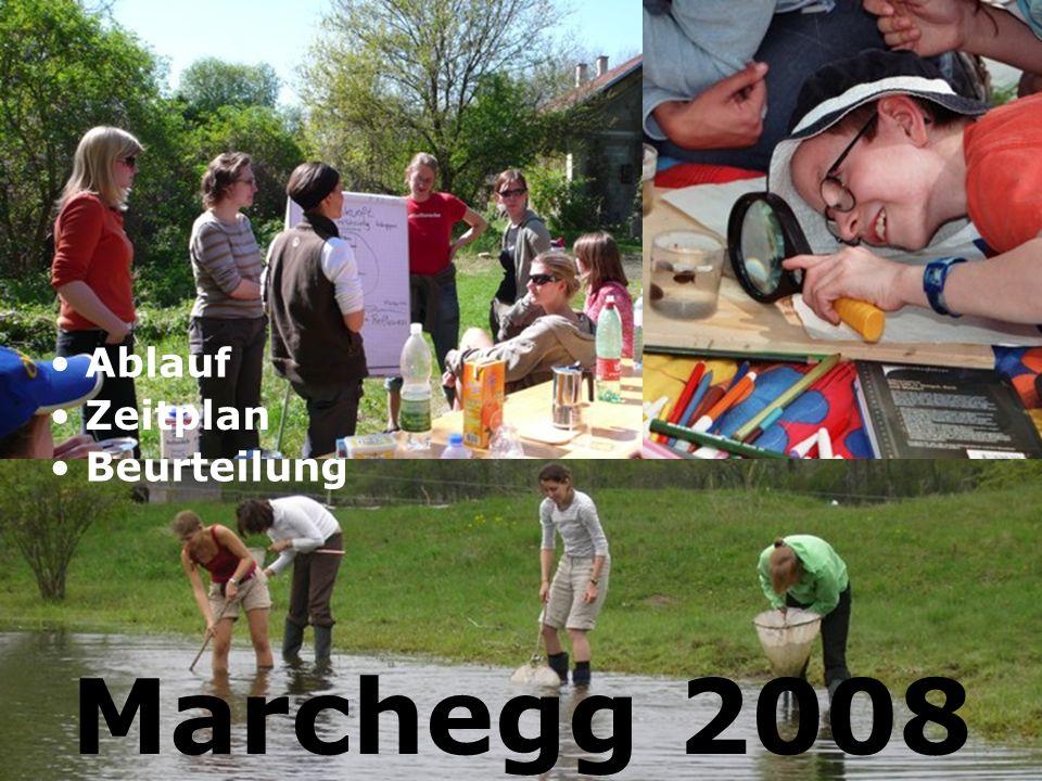Marchegg 2008 Ablauf Zeitplan Beurteilung