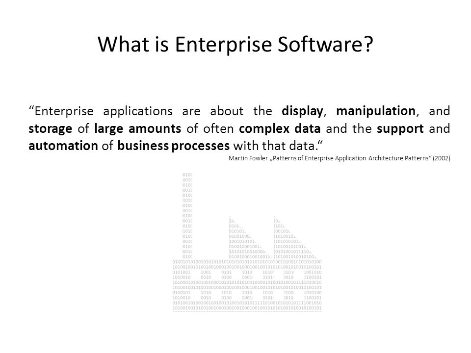 What is Enterprise Software? Enterprise applications are about the display, manipulation, and storage of large amounts of often complex data and the s