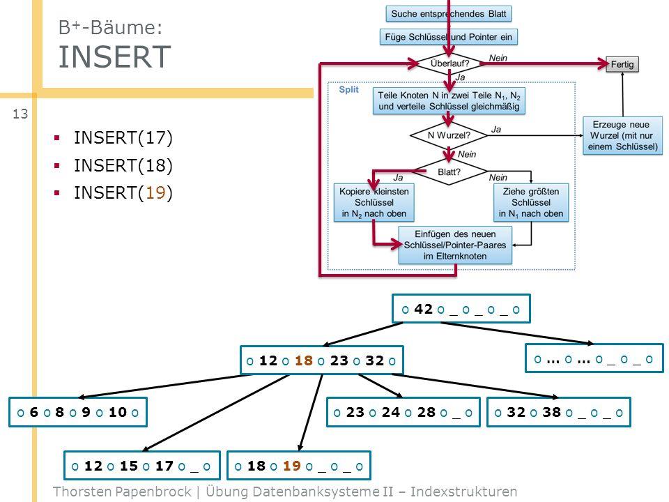 B + -Bäume: INSERT Thorsten Papenbrock | Übung Datenbanksysteme II – Indexstrukturen 13 o 42 o _ o _ o _ o o 12 o 23 o 32 o _ o o … o … o _ o _ o o 6