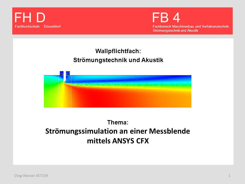 Fachhochschule Düsseldorf FB 4 Fachbereich Maschinenbau und Verfahrenstechnik Strömungstechnik und Akustik FH D Oleg Wenzel 457159 12 CFX- Solver Manager