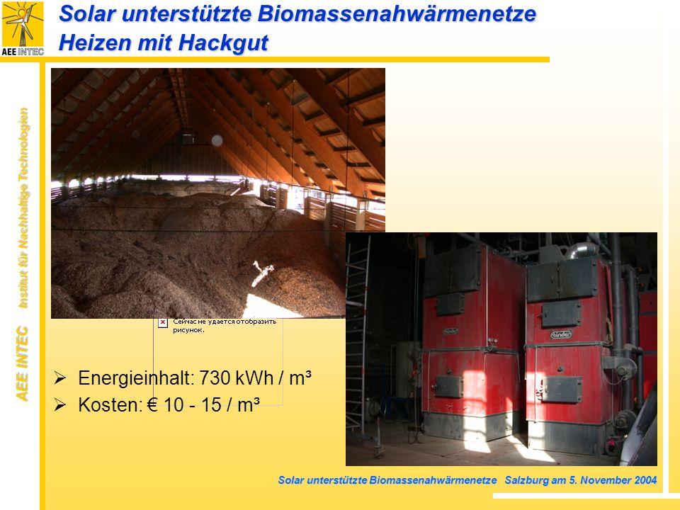 AEE INTEC Institut für Nachhaltige Technologien Solar unterstützte Biomassenahwärmenetze Salzburg am 5. November 2004 Solar unterstützte Biomassenahwä