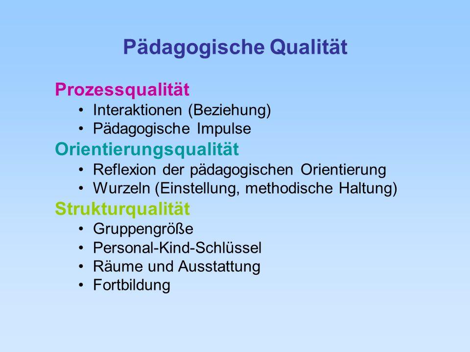 Pädagogische Qualität Prozessqualität Interaktionen (Beziehung) Pädagogische Impulse Orientierungsqualität Reflexion der pädagogischen Orientierung Wu