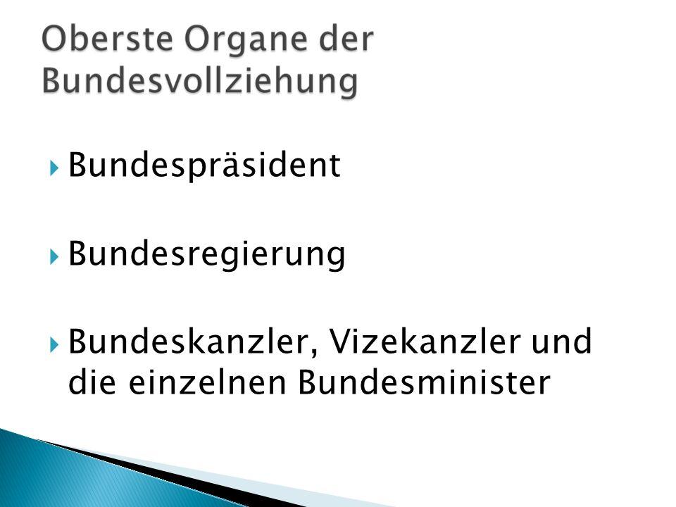 Bundespräsident Bundesregierung Bundeskanzler, Vizekanzler und die einzelnen Bundesminister