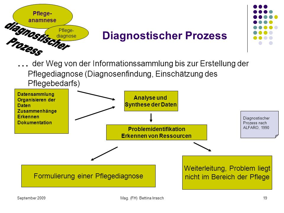 September 2009Mag. (FH) Bettina Irrasch19 Diagnostischer Prozess … der Weg von der Informationssammlung bis zur Erstellung der Pflegediagnose (Diagnos