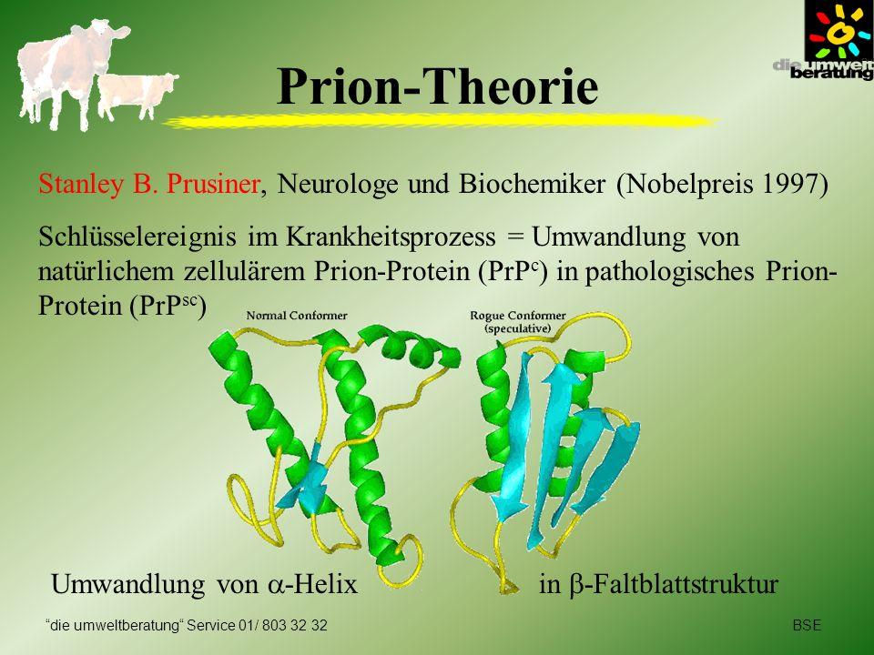 BSEdie umweltberatung Service 01/ 803 32 32 Prion-Theorie Stanley B. Prusiner, Neurologe und Biochemiker (Nobelpreis 1997) Schlüsselereignis im Krankh