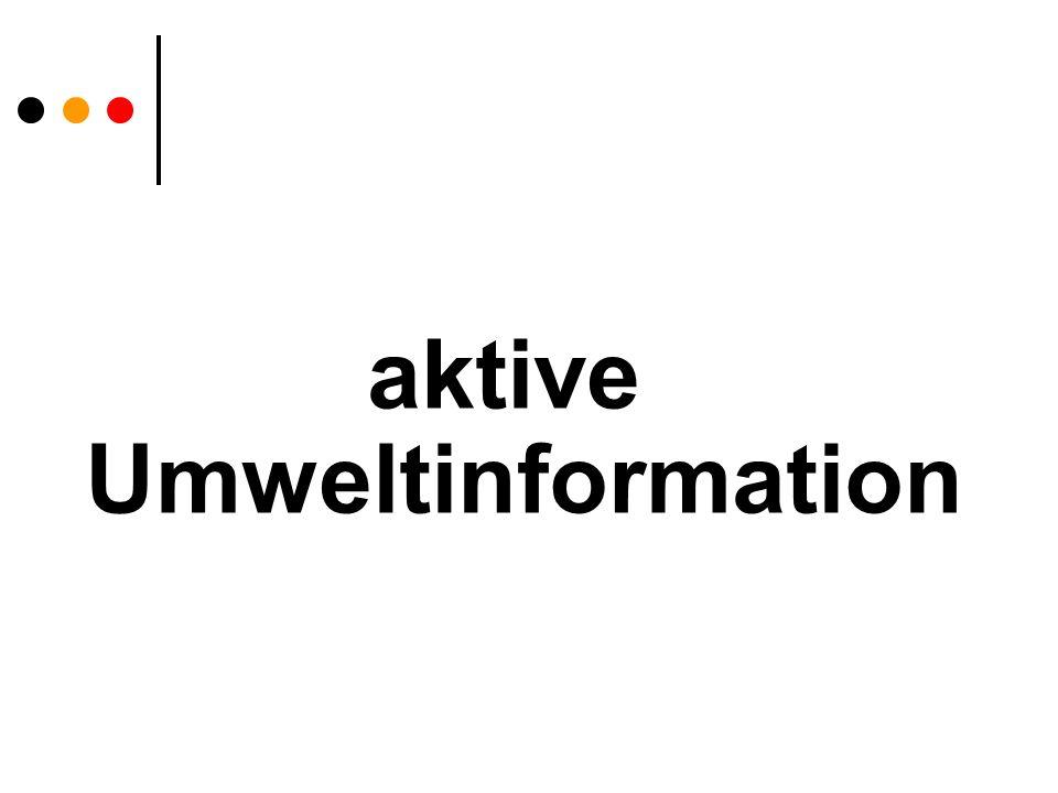 aktive Umweltinformation mögliche Vorgangsweise extern Ansprechperson bekannt geben Organigramm veröffentlichen (Internet) Mindestbestand an Uw.information veröffentlichen eigene Vorschriften Link RIS oder ähnliche Seiten für VO und LGBl, EurLEX etc.