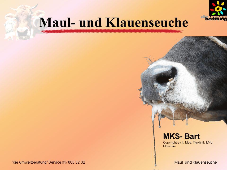Maul- und Klauenseuchedie umweltberatung Service 01/ 803 32 32 Maul- und Klauenseuche MKS- Bart Copyright by II.