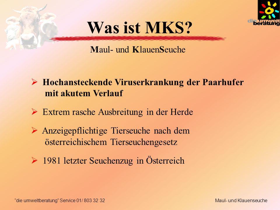 Was ist MKS.