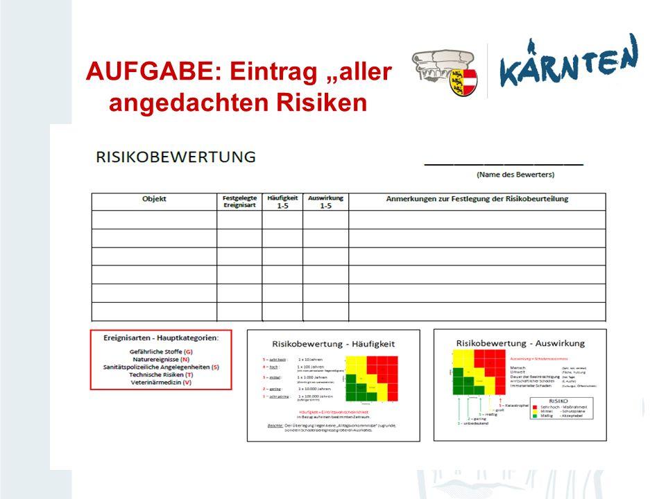 AUFGABE: Eintrag aller angedachten Risiken