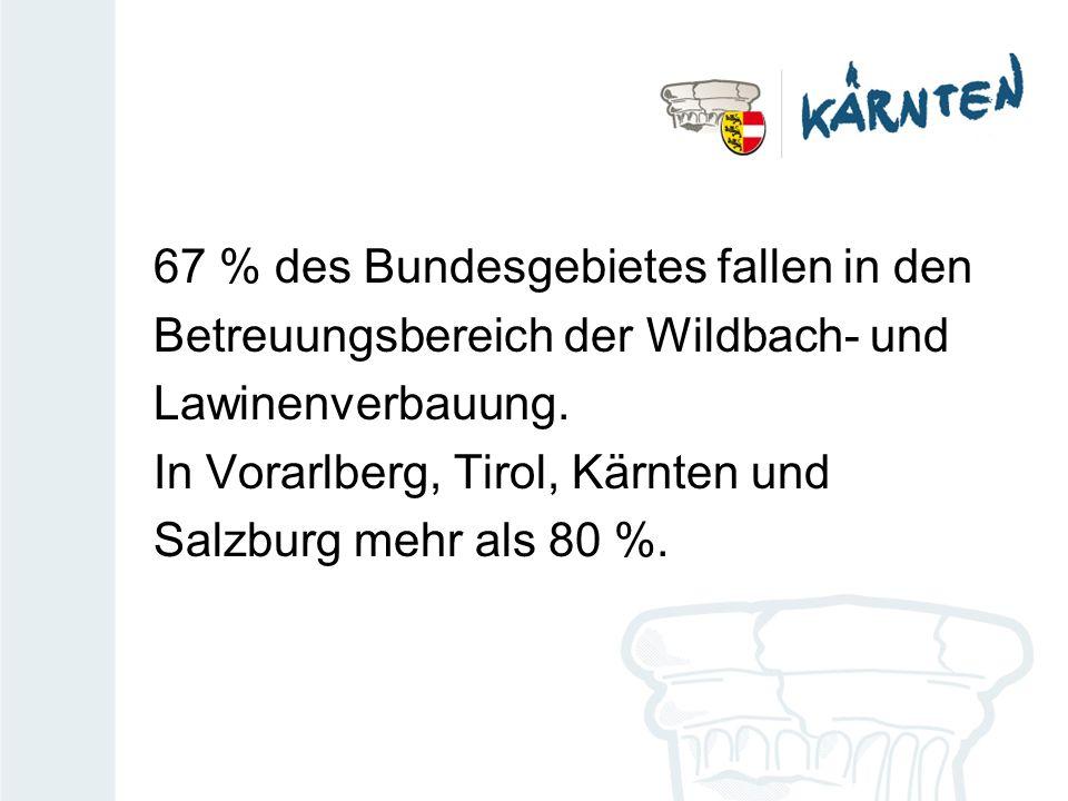 67 % des Bundesgebietes fallen in den Betreuungsbereich der Wildbach- und Lawinenverbauung. In Vorarlberg, Tirol, Kärnten und Salzburg mehr als 80 %.
