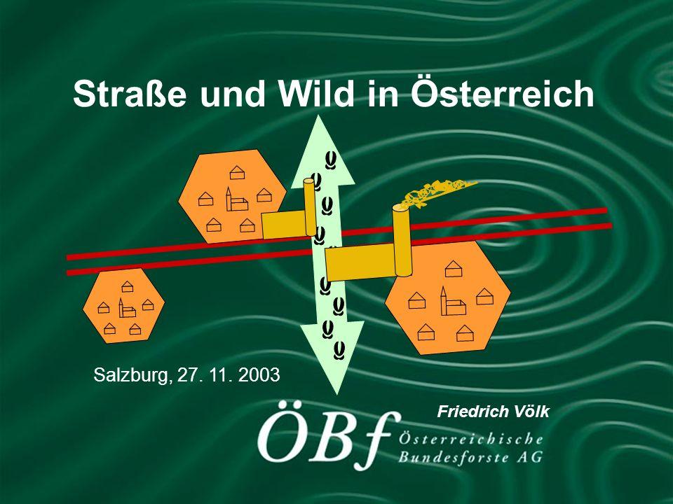 Friedrich Völk, Unternehmensleitung Purkersdorf Straße und Wild in Österreich Salzburg, 27. 11. 2003 Friedrich Völk