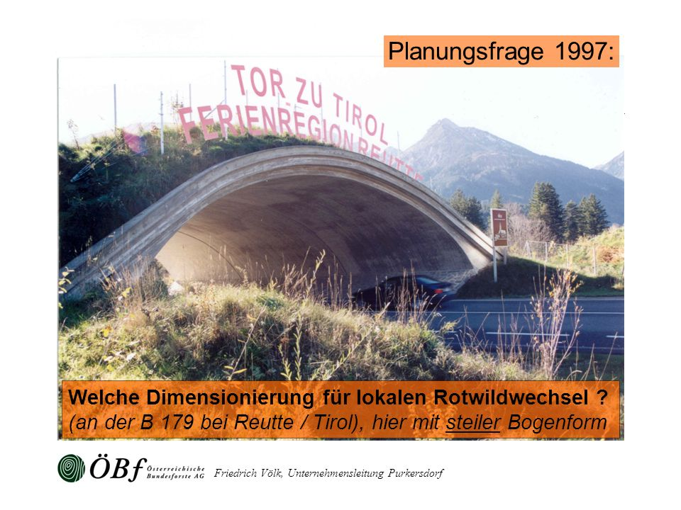 Friedrich Völk, Unternehmensleitung Purkersdorf Welche Dimensionierung für lokalen Rotwildwechsel ? (an der B 179 bei Reutte / Tirol), hier mit steile