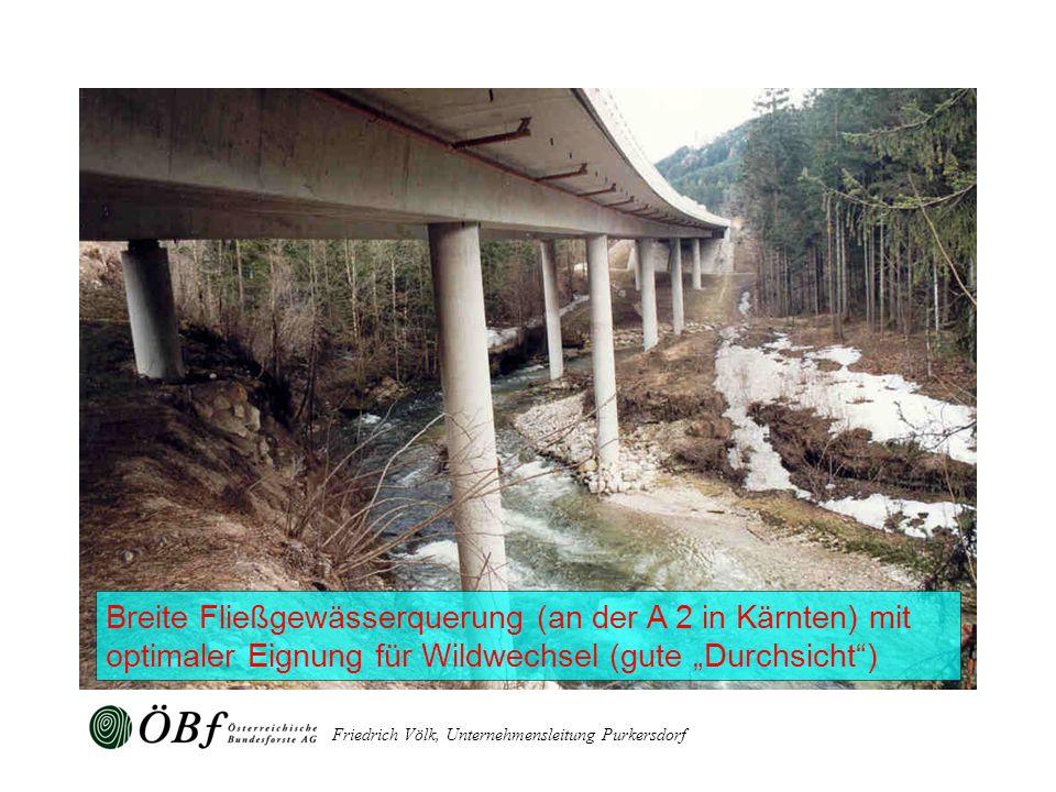 Friedrich Völk, Unternehmensleitung Purkersdorf Breite Fließgewässerquerung (an der A 2 in Kärnten) mit optimaler Eignung für Wildwechsel (gute Durchs