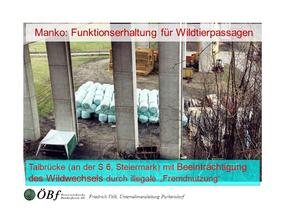 Friedrich Völk, Unternehmensleitung Purkersdorf Talbrücke (an der S 6, Steiermark) mit Beeinträchtigung des Wildwechsels durch illegale Fremdnutzung M