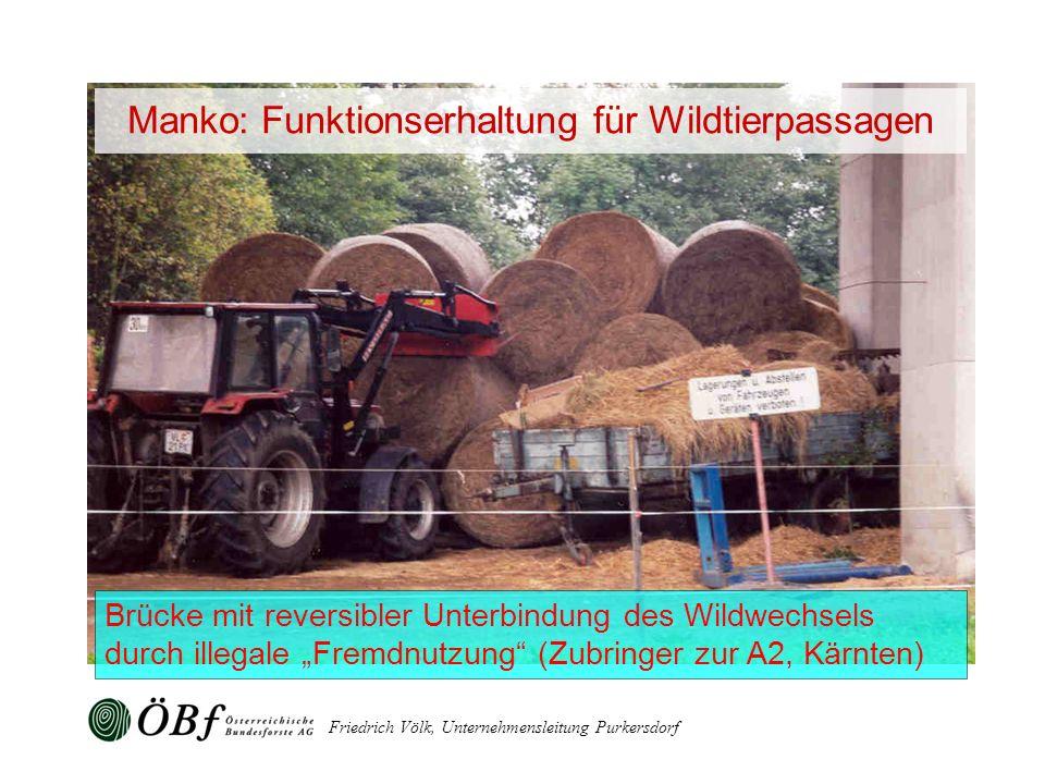 Friedrich Völk, Unternehmensleitung Purkersdorf Brücke mit reversibler Unterbindung des Wildwechsels durch illegale Fremdnutzung (Zubringer zur A2, Kä