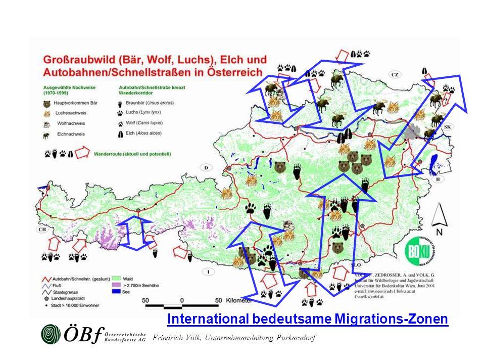 Friedrich Völk, Unternehmensleitung Purkersdorf International bedeutsame Migrations-Zonen