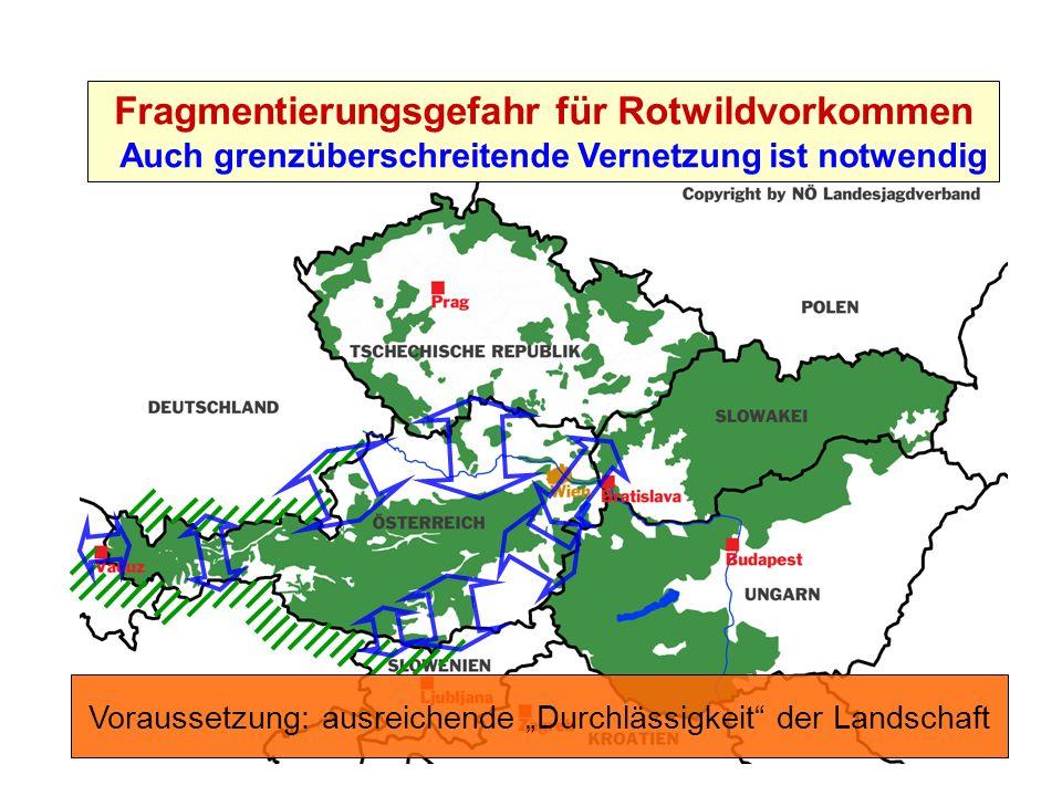 Friedrich Völk, Unternehmensleitung Purkersdorf Fragmentierungsgefahr für Rotwildvorkommen Auch grenzüberschreitende Vernetzung ist notwendig Vorausse