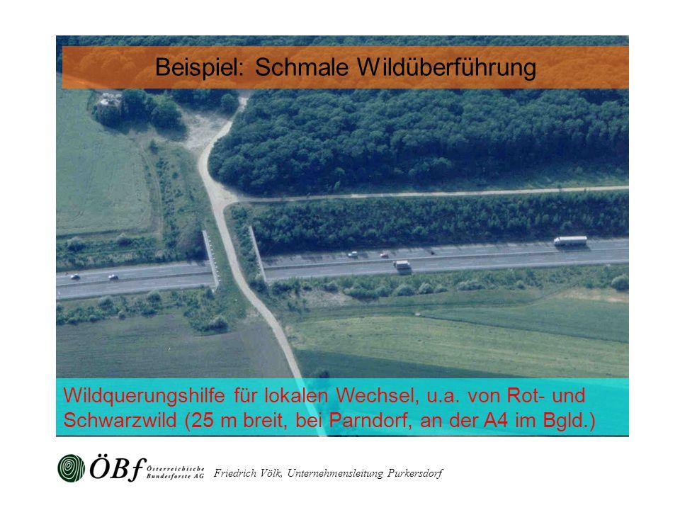 Friedrich Völk, Unternehmensleitung Purkersdorf Wildquerungshilfe für lokalen Wechsel, u.a. von Rot- und Schwarzwild (25 m breit, bei Parndorf, an der