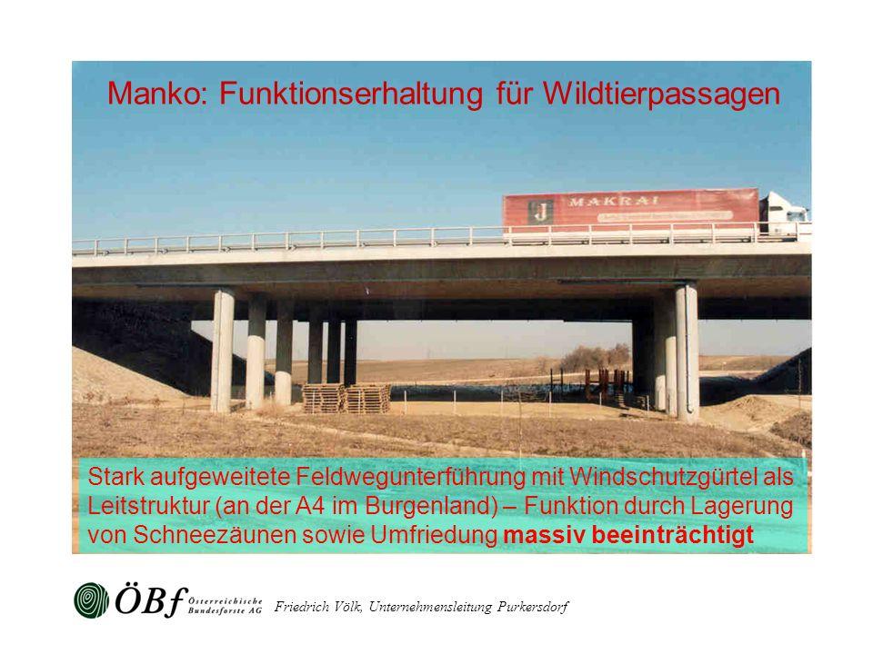 Friedrich Völk, Unternehmensleitung Purkersdorf Stark aufgeweitete Feldwegunterführung mit Windschutzgürtel als Leitstruktur (an der A4 im Burgenland)