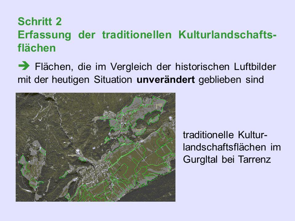 Schritt 2 Erfassung der traditionellen Kulturlandschafts- flächen Flächen, die im Vergleich der historischen Luftbilder mit der heutigen Situation unv