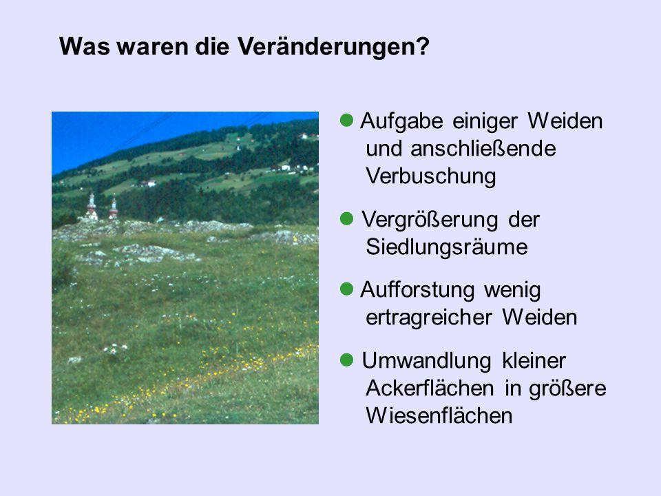 Aufgabe einiger Weiden und anschließende Verbuschung Vergrößerung der Siedlungsräume Aufforstung wenig ertragreicher Weiden Umwandlung kleiner Ackerfl