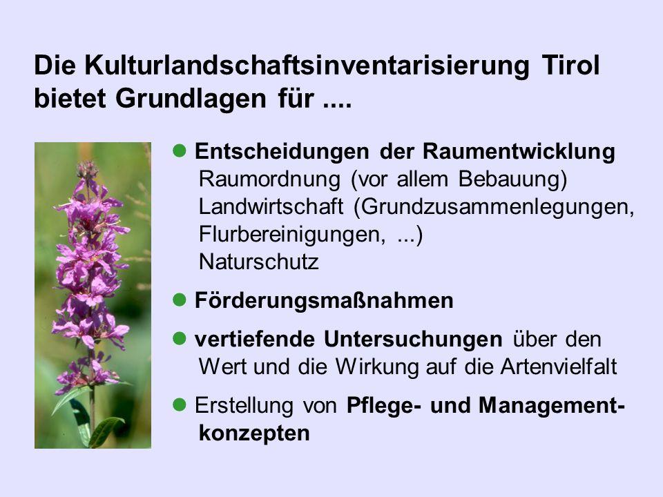 Entscheidungen der Raumentwicklung Raumordnung (vor allem Bebauung) Landwirtschaft (Grundzusammenlegungen, Flurbereinigungen,...) Naturschutz Förderun
