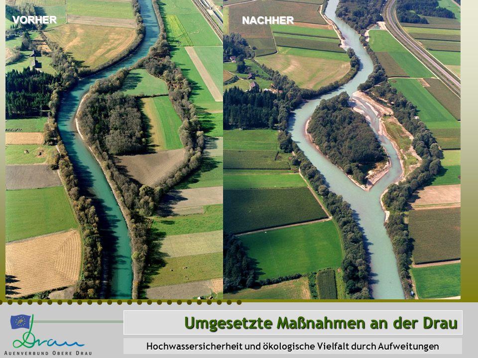 Umgesetzte Maßnahmen an der Drau Hochwassersicherheit und ökologische Vielfalt durch Aufweitungen VORHER NACHHER