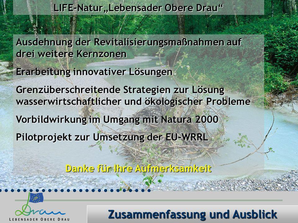 LIFE-NaturLebensader Obere Drau Ausdehnung der Revitalisierungsmaßnahmen auf drei weitere Kernzonen Erarbeitung innovativer Lösungen Grenzüberschreitende Strategien zur Lösung wasserwirtschaftlicher und ökologischer Probleme Vorbildwirkung im Umgang mit Natura 2000 Pilotprojekt zur Umsetzung der EU-WRRL Danke für Ihre Aufmerksamkeit Zusammenfassung und Ausblick