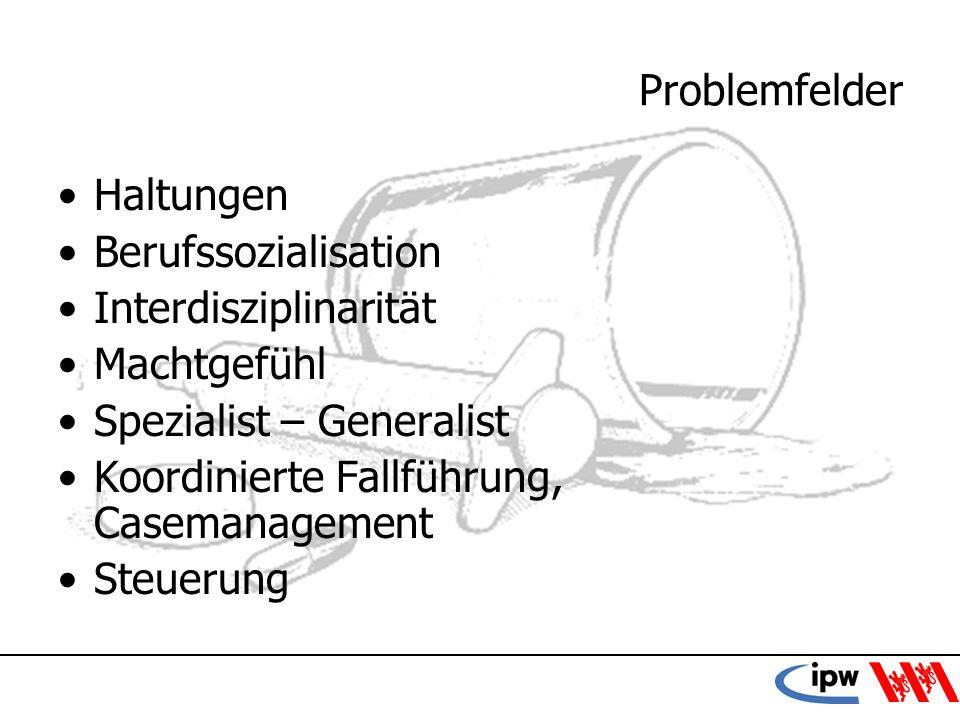 44 Problemfelder Haltungen Berufssozialisation Interdisziplinarität Machtgefühl Spezialist – Generalist Koordinierte Fallführung, Casemanagement Steue