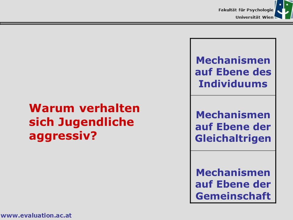 Fakultät für Psychologie Universität Wien www.evaluation.ac.at Mechanismen auf Ebene des Individuums Mechanismen auf Ebene der Gleichaltrigen Mechanis