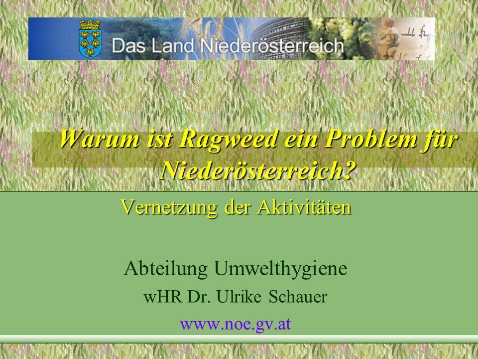 Warum ist Ragweed ein Problem für Niederösterreich? Vernetzung der Aktivitäten Abteilung Umwelthygiene wHR Dr. Ulrike Schauer www.noe.gv.at