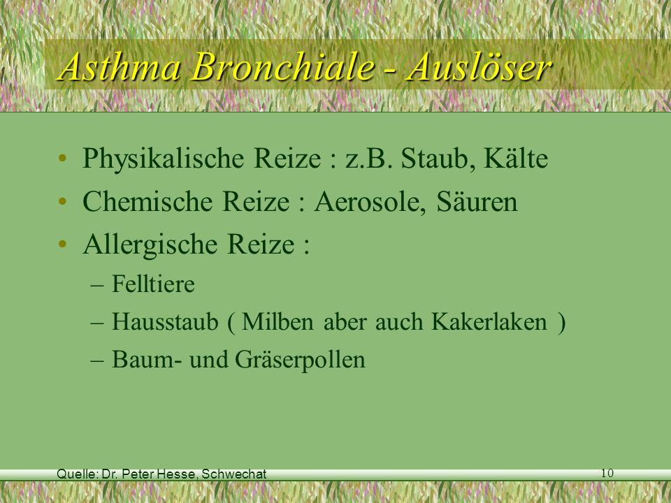 Quelle: Dr. Peter Hesse, Schwechat 10 Asthma Bronchiale - Auslöser Physikalische Reize : z.B. Staub, Kälte Chemische Reize : Aerosole, Säuren Allergis