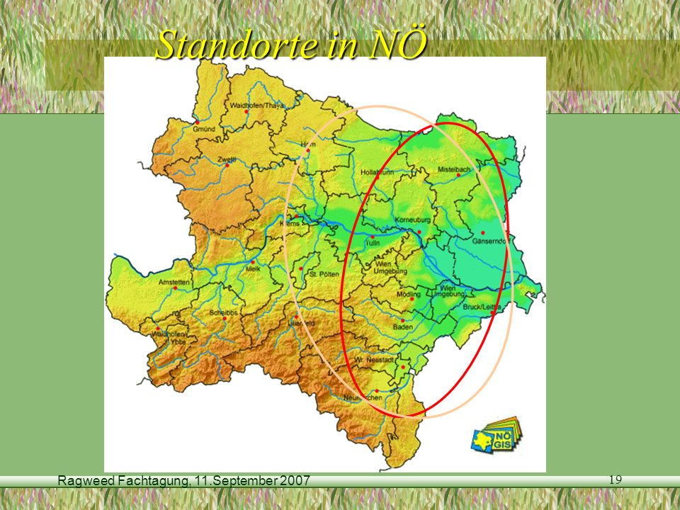 Ragweed Fachtagung, 11.September 2007 19 Standorte in NÖ