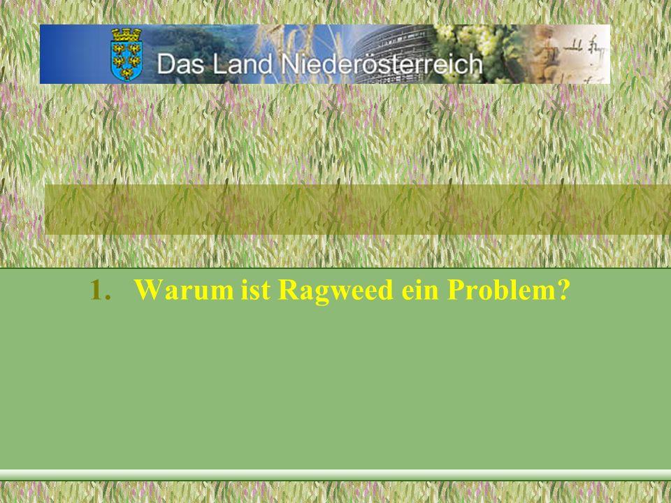 1.Warum ist Ragweed ein Problem? 2.Warum für Niederösterreich?