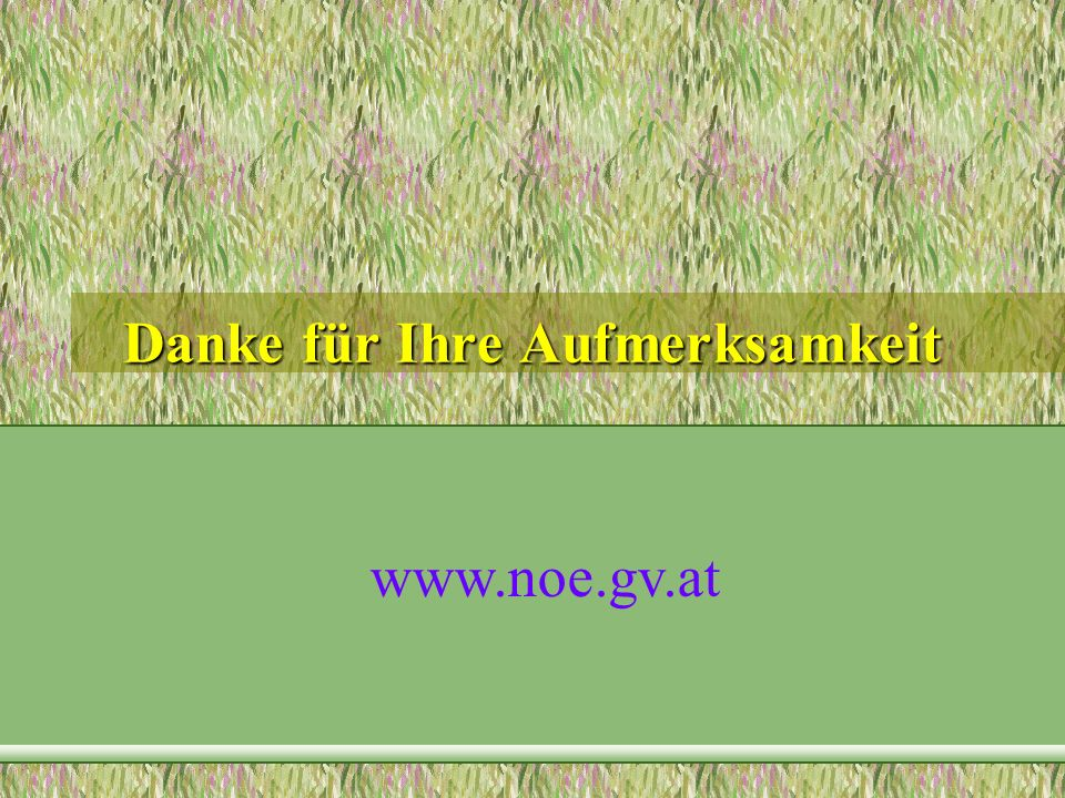 Danke für Ihre Aufmerksamkeit www.noe.gv.at
