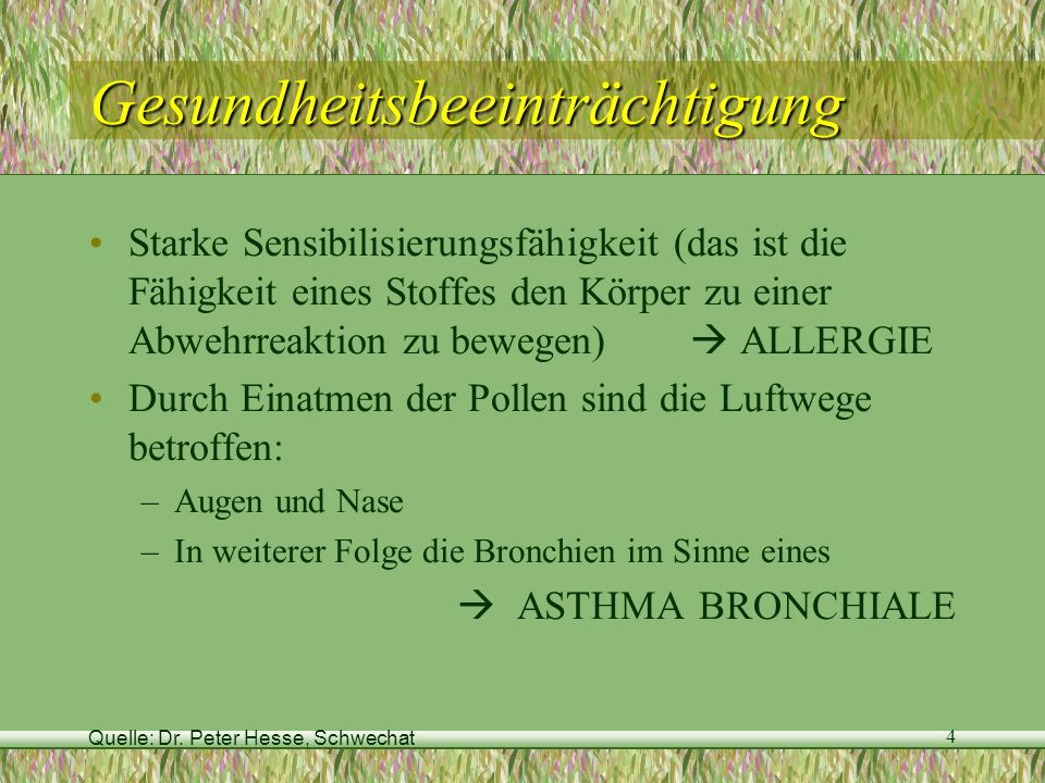 Quelle: Dr. Peter Hesse, Schwechat 4 Gesundheitsbeeinträchtigung Starke Sensibilisierungsfähigkeit (das ist die Fähigkeit eines Stoffes den Körper zu