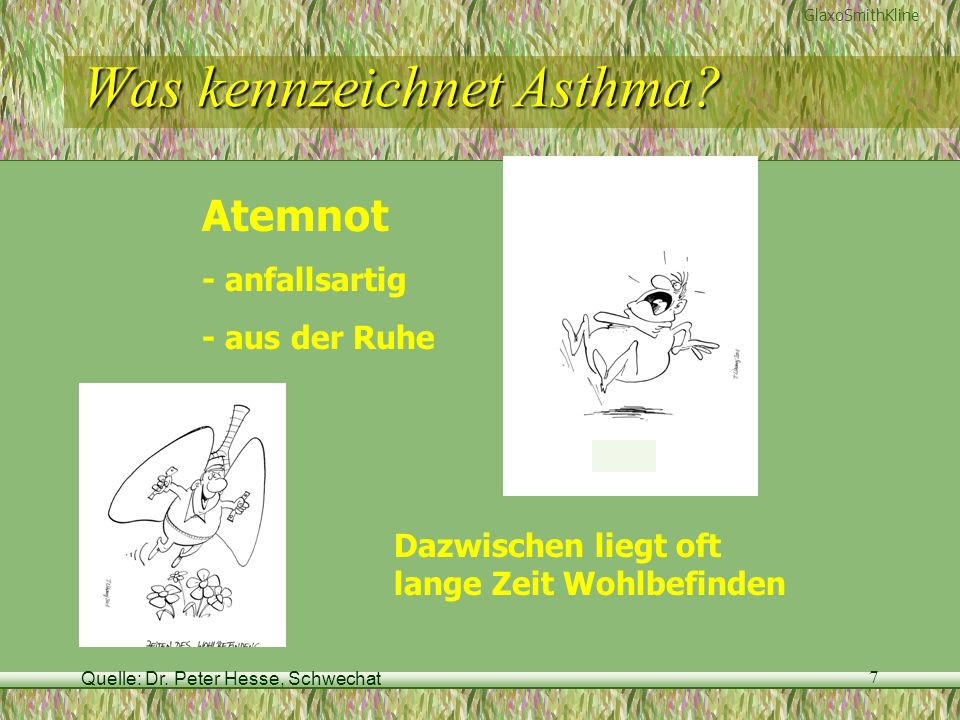 Quelle: Dr. Peter Hesse, Schwechat 7 Was kennzeichnet Asthma? GlaxoSmithKline Atemnot - anfallsartig - aus der Ruhe Dazwischen liegt oft lange Zeit Wo