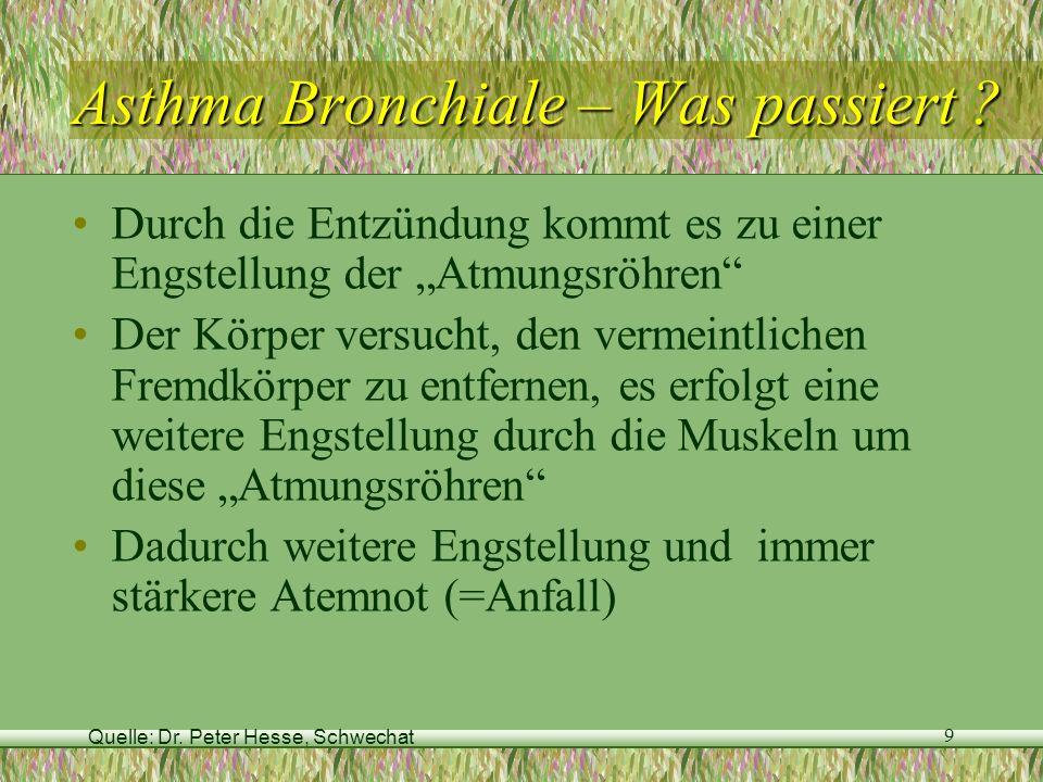 Quelle: Dr. Peter Hesse, Schwechat 9 Asthma Bronchiale – Was passiert ? Durch die Entzündung kommt es zu einer Engstellung der Atmungsröhren Der Körpe