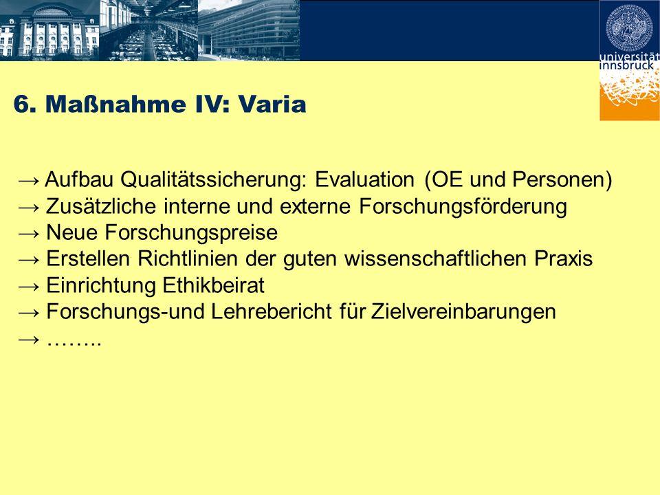 6. Maßnahme IV: Varia Aufbau Qualitätssicherung: Evaluation (OE und Personen) Zusätzliche interne und externe Forschungsförderung Neue Forschungspreis