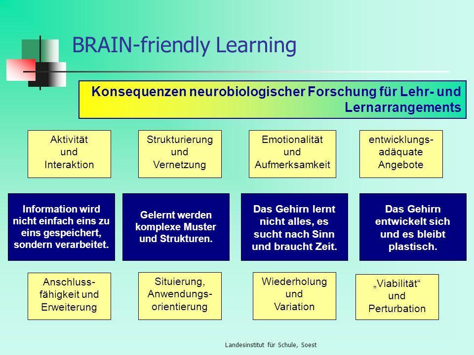Landesinstitut für Schule, Soest lerntheoretische Grundlagen Das Gehirn verfügt nicht über Speicherplätze, an denen etwas hinterlegt werden kann, sondern das Wissen (das Gelernte, das Gedächtnis) steckt vielmehr in der Vernetzung der Neuronen und insbesondere in der Stärke der Neuronenverbindungen (Synapsengewichte, Neuroplastizität).