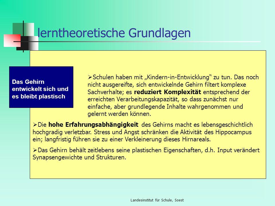 Landesinstitut für Schule, Soest lerntheoretische Grundlagen Schulen haben mit Kindern-in-Entwicklung zu tun. Das noch nicht ausgereifte, sich entwick