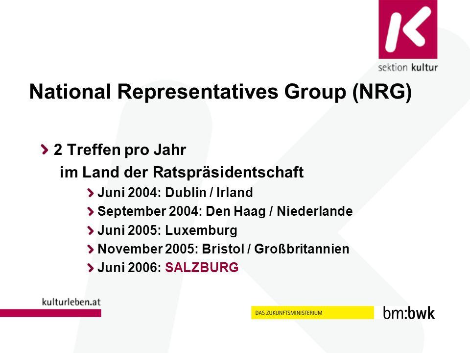 National Representatives Group (NRG) 2 Treffen pro Jahr im Land der Ratspräsidentschaft Juni 2004: Dublin / Irland September 2004: Den Haag / Niederlande Juni 2005: Luxemburg November 2005: Bristol / Großbritannien Juni 2006: SALZBURG