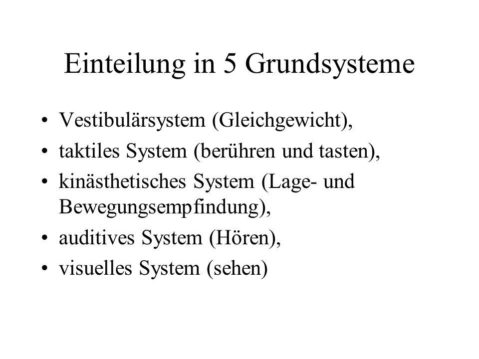 Einteilung in 5 Grundsysteme Vestibulärsystem (Gleichgewicht), taktiles System (berühren und tasten), kinästhetisches System (Lage- und Bewegungsempfindung), auditives System (Hören), visuelles System (sehen)