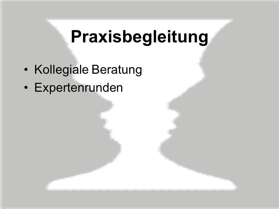 Praxisbegleitung Kollegiale Beratung Expertenrunden