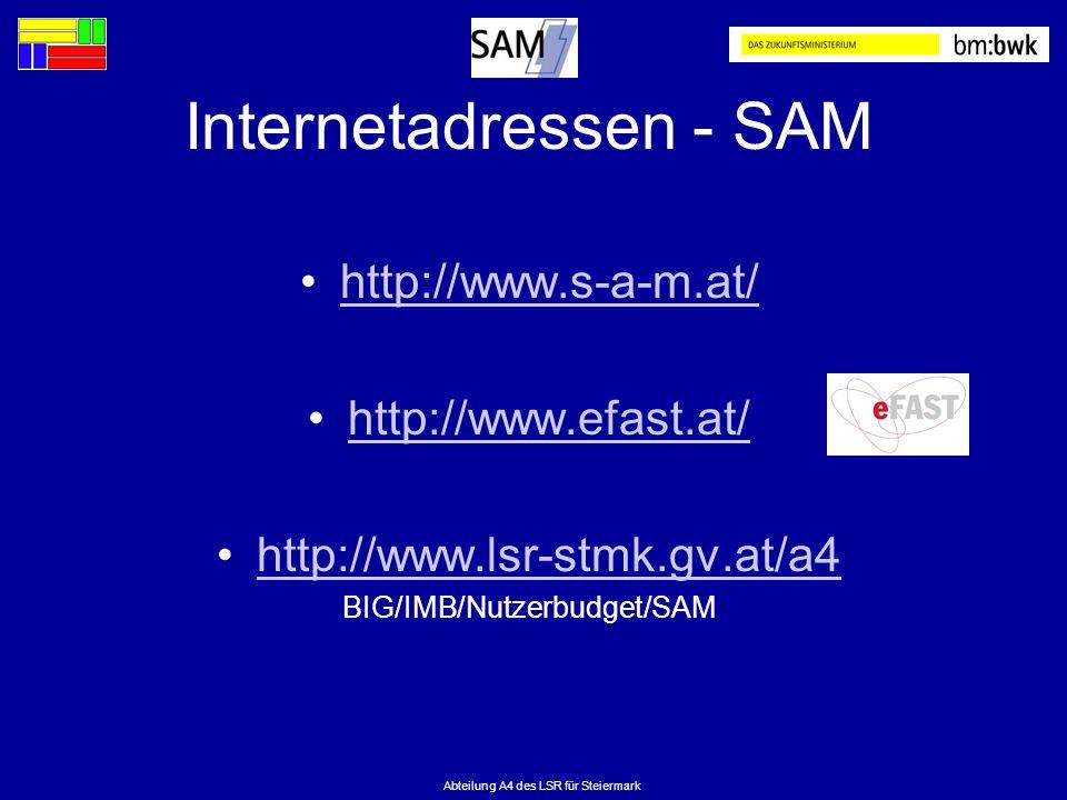 Abteilung A4 des LSR für Steiermark Internetadressen - SAM http://www.s-a-m.at/ http://www.efast.at/ http://www.lsr-stmk.gv.at/a4 BIG/IMB/Nutzerbudget